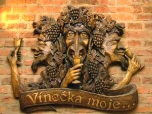VineckaMoje